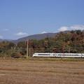 Photos: 000203_20131117_JR高月-河毛