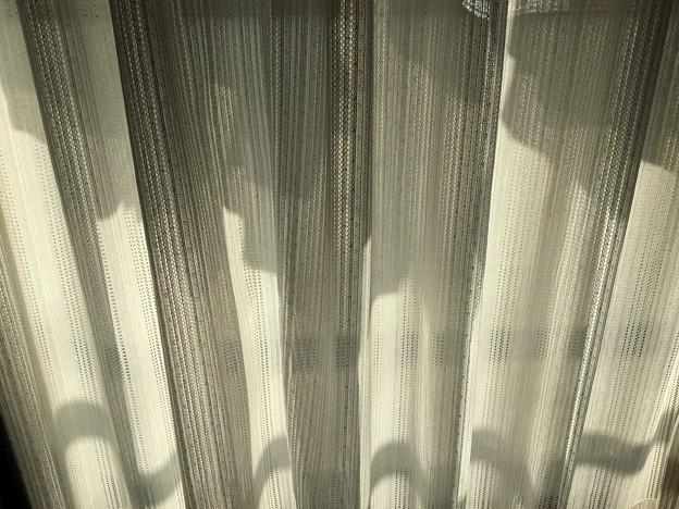 陰影 陰影