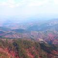 写真: 山頂から~