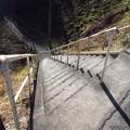 写真: 急階段