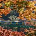 秋の水郡線