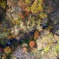 秋色の渓谷