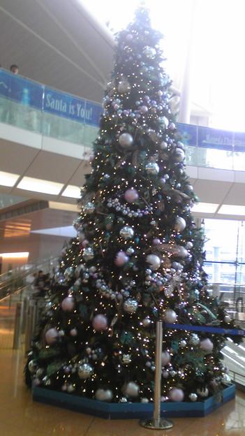 クリスマスツリー置いておこう。これは羽田空港の。