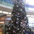 Photos: クリスマスツリー置いておこう。これは羽田空港の。