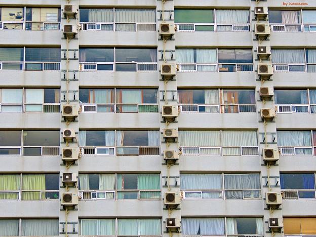 Photos: 路地裏Windows