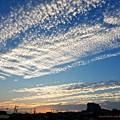 Photos: 今朝の陽光