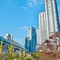 Photos: 秋の沿線9