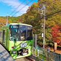 Photos: 紅葉の駅