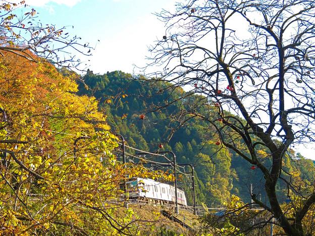 秋の沿線13