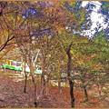 秋の沿線16(絵画風)