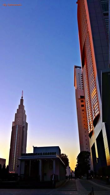 朝の新宿摩天楼