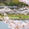 春の中央沿線(1)