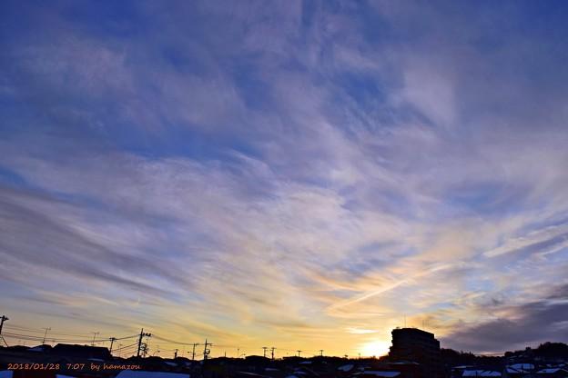 写真: 朝日(180128)