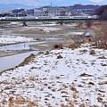 写真: 残雪の河川敷(1)