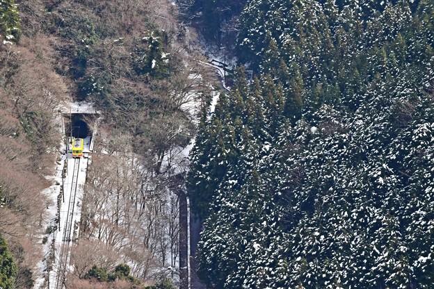 写真: 残雪の高尾山麓(1)