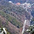 写真: 残雪の高尾山麓(2)