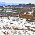 写真: 残雪の河川敷(2)