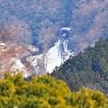 残雪の高尾山麓(3)