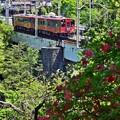 写真: 赤べこ列車
