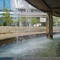 写真: 滝の広場