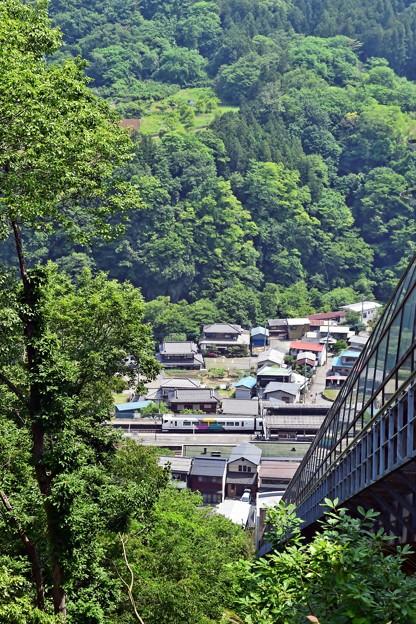 Photos: 新緑の麓