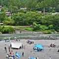 写真: 奥多摩の夏景(1)