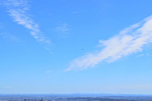 写真: ソは青い空のソ