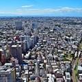 写真: 富士が見える沿線