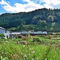 Photos: 山郷の秋(1)