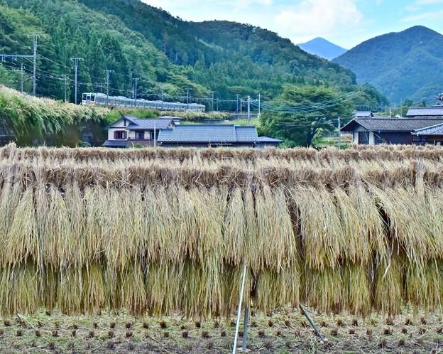 山郷の秋(2)