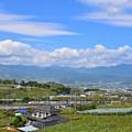 Photos: ぶどう郷