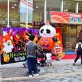Photos: ハロウィンパンダ
