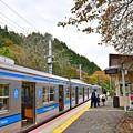 Photos: 秋色のホーム