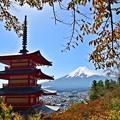 写真: 秋香る富士(8)