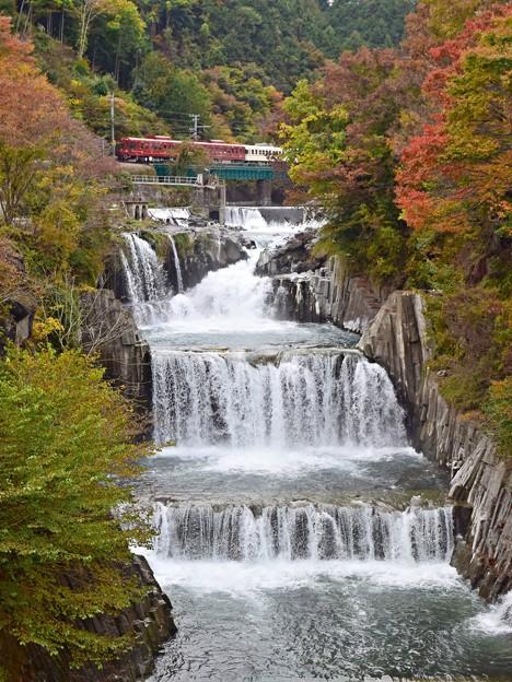 写真: 秋色沿線(32)