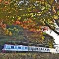 Photos: Mt.TAKAO号