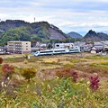 Photos: 秋色沿線(36)