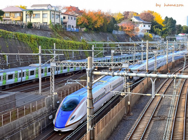 Photos: 秋色沿線(39)