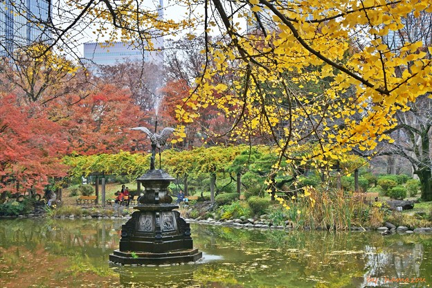 晩秋の公園