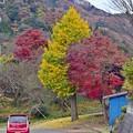 写真: 山郷