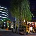 写真: 夜の柳橋