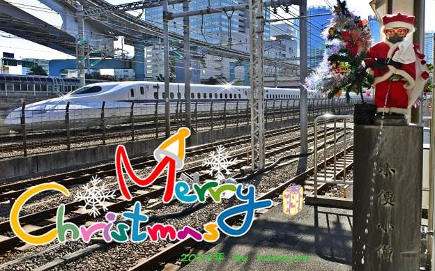 Photos: Merry Christmas