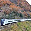 写真: 秋色沿線(44)