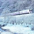 Photos: 高尾雪景色