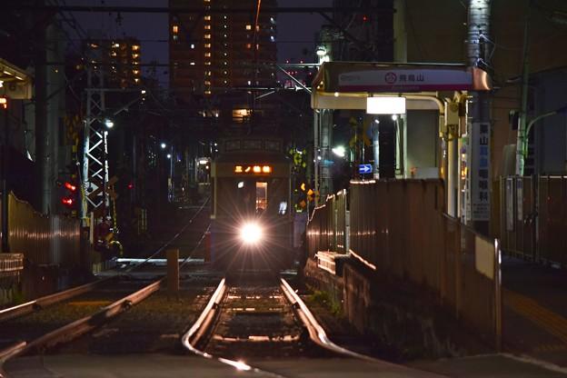 Photos: 夜のヘッドライト