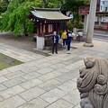 Photos: 都電が見える神社