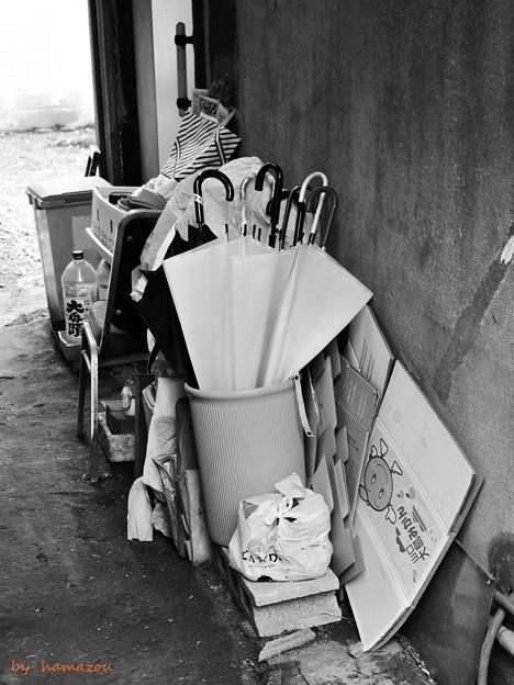 路地裏の傘々