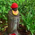 Photos: 赤い帽子