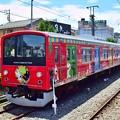 Photos: カラフル電車(1)