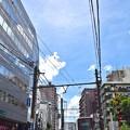 Photos: 夏色沿線(10)
